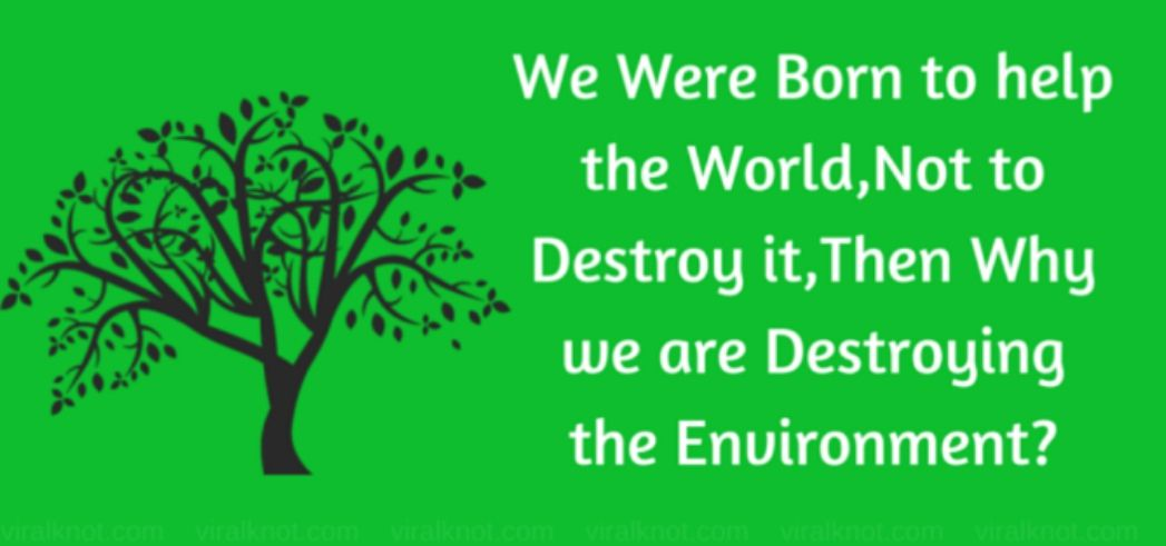 save paper save environment essay Save paper to save forests by reducing the font size of your document.