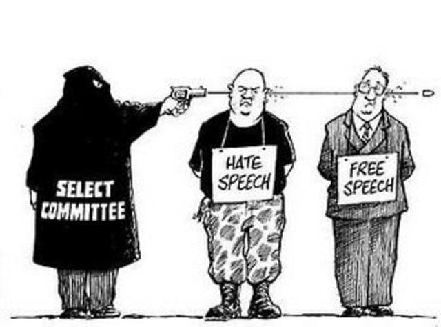 on free speech and hate speech regulations