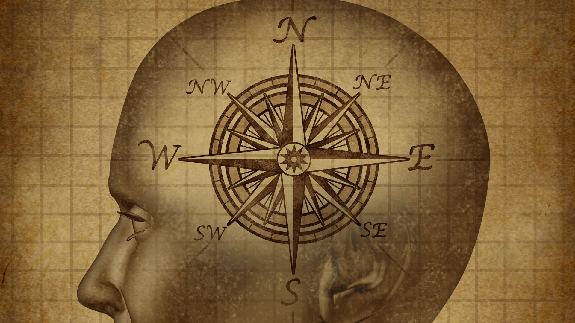 which way does my moral compass Individual professional moral compass in nursing essays and research papers  which way does my moral compass point lora atkinson grand canyon university:.