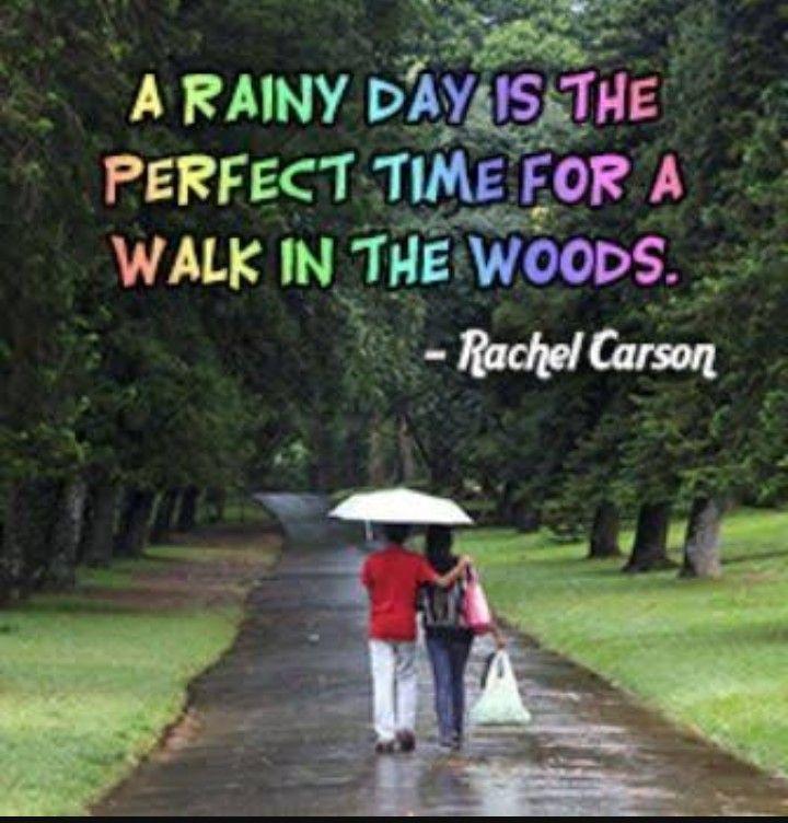 one rainy day essay