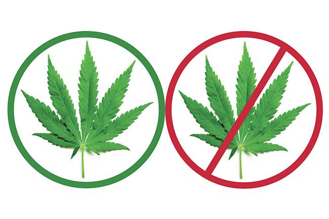 a description of the argument whether or not to legalize marijuana Marijuana legalization pros/cons whether or not marijuana is legal  and counter your arguments with logical facts.