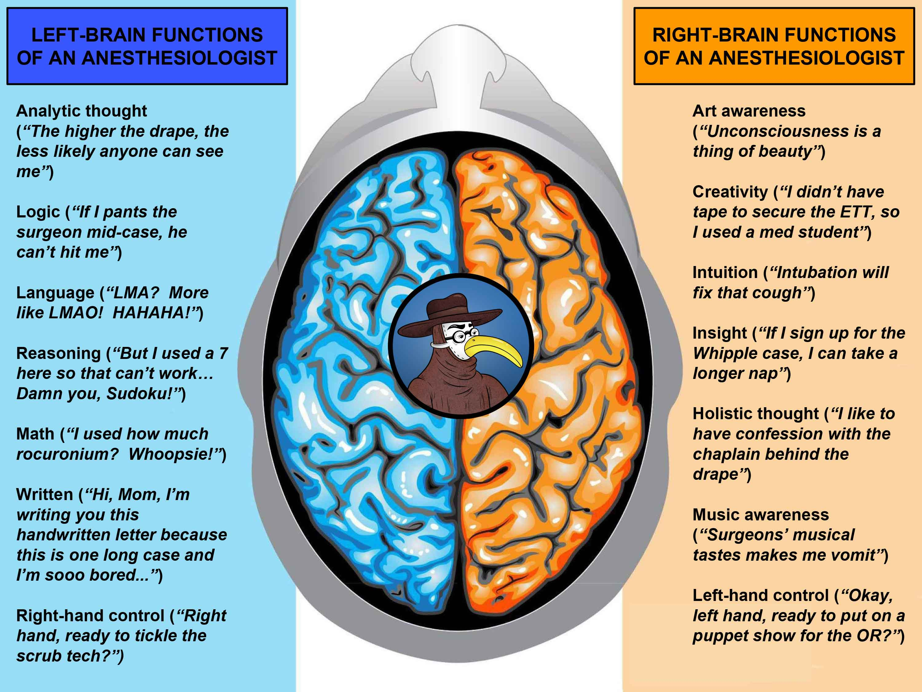 the misconception about how human brain hemispheres operate in right brain left brain fact and ficti Hemisphere brain functions the brain is divided into two halves (hemispheres) usually, the left half of the brain controls the right side of the body.