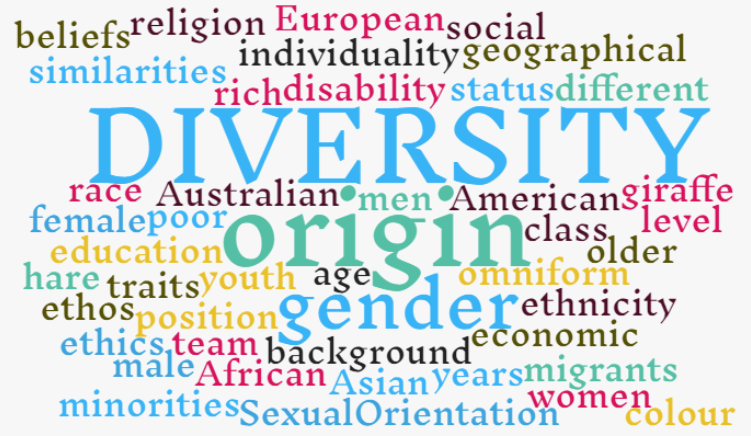 searching for diversity essay